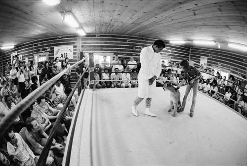 Muhammad Ali, stage magician Doug Henning1974 © 1978 Peter Angelo Simon
